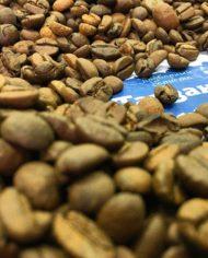 Кофе в зернах танзании